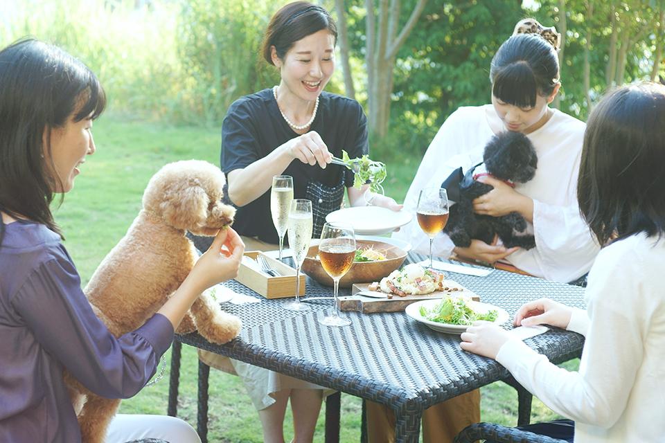 ペットとお食事